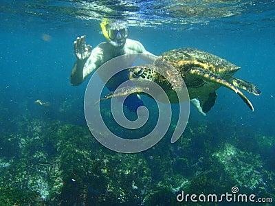 Snorkeling com uma tartaruga de mar Imagem Editorial
