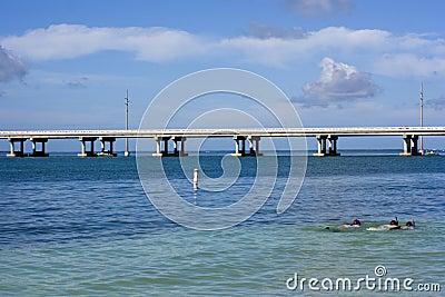 Snorkeling in Florida
