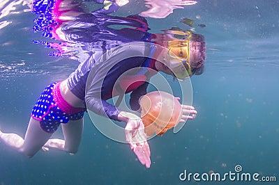 Snorkeling in Jellyfish