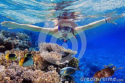 Snorkeling na água tropical de Egipto