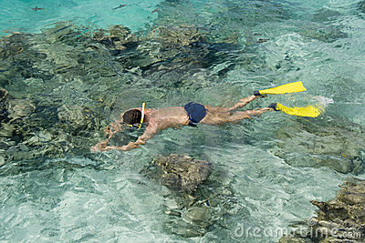 Snorkeling on a tropical reef