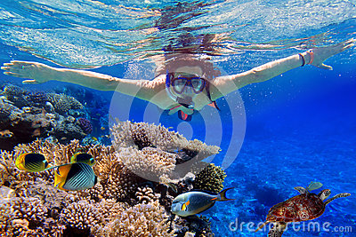 Snorkeling in the tropical water of Egypt