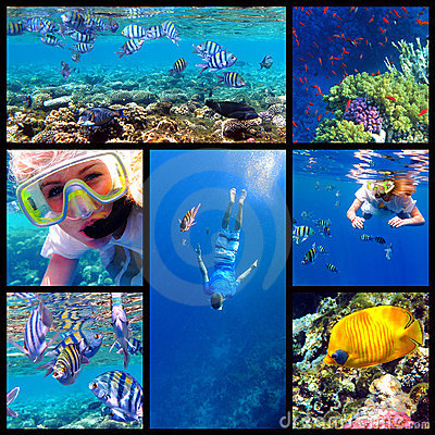 Snorkeling underwater collage