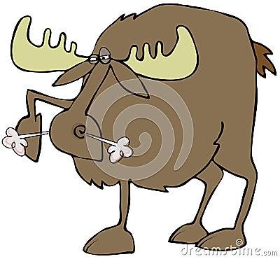 Snorting moose