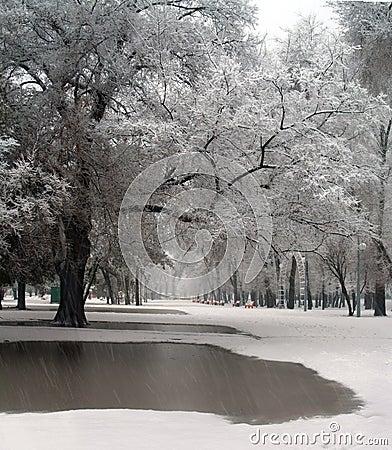 Free Snow And Rain Stock Image - 18242471