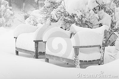 Snow and benches