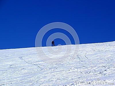 Snow-Border