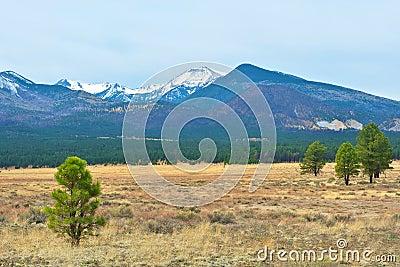 Snow capped mountain in Arizona.