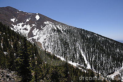 Snow Capped Mountain - Humphreys Peak