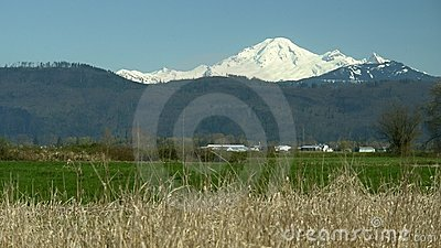 Snow Capped Mountain Mt. Baker