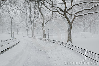 Snow in Central Park - Peaceful winter atmosphere