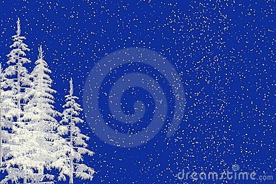 Snow and Christmas Trees Background
