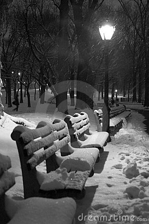 Free Snow Covered Benches Stock Photography - 6070752