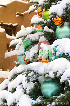 Snow Covered Christmas Tree In Santa Fe New Mexico