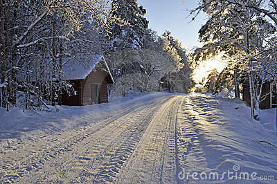 Snow Covered Country Road Stock Photos Image 12327163