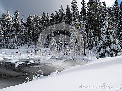 Snow Covered Creek and pond