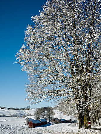 Snow Covered Farm Royalty Free Stock Photography - Image: 21790707