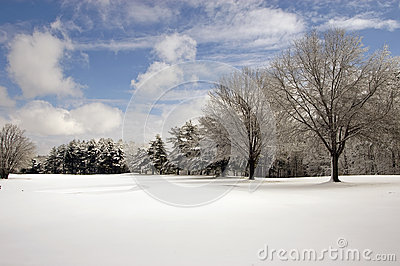Snow covered field trees and clouds