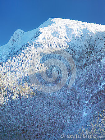 Snow covered Great Choc mountain