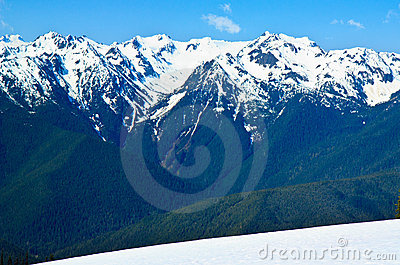 Snow covered Mountain, Hurricane Ridge, Olympic NP