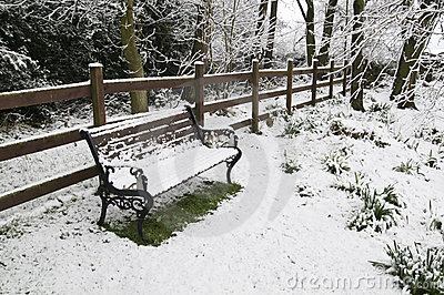 Snow covered park bench.