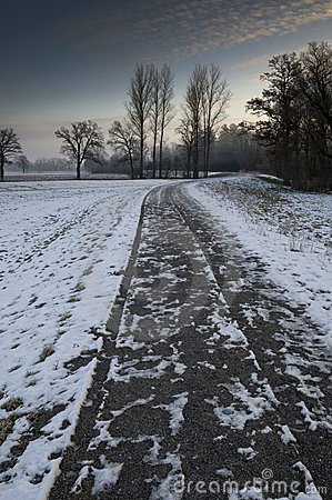 Snow covered path in winter