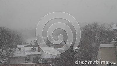 Snow falls in Novi Sad on Grbavica.Serbia. Novi Sad on Grbavica.Serbia.2019.Snow falls in city stock video footage