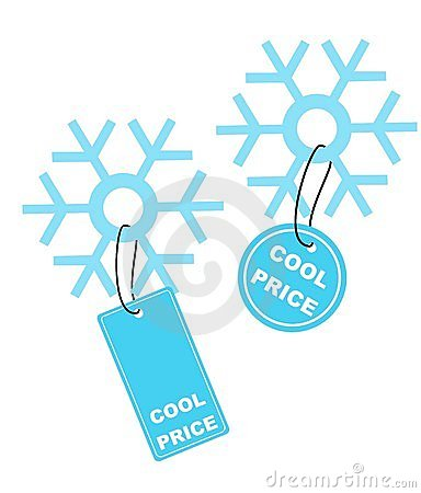 Snow flake with COOL PRICE lab