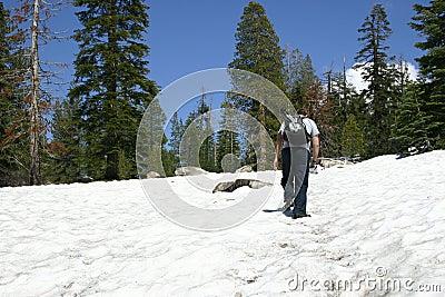 Snow Hiker - Sentinel Dome