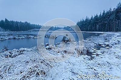 Snow misty morning on lake