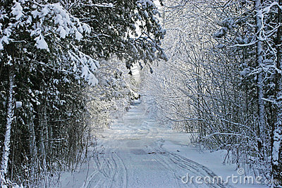 Snow Mobile Trail