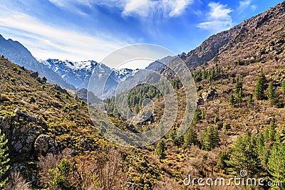 Snow mountains from Asco valley, Corsica