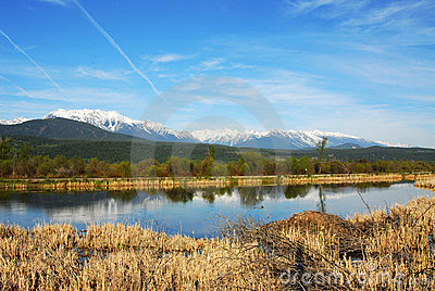 Snow mountains and wetland