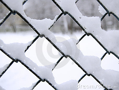Snow on net
