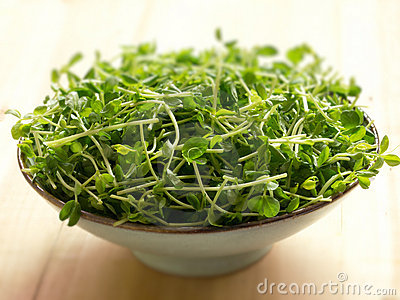 Snow pea shoots