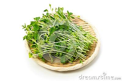 Snow peas leaf