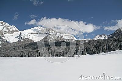 Snow scene panorama