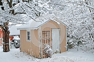 Snow on the shed