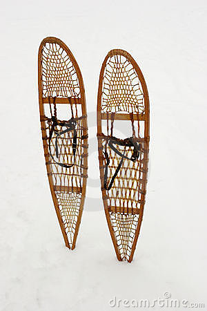 Free Snow Shoes Stock Images - 1877754