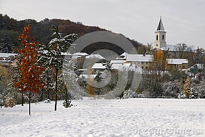 Snow by the village