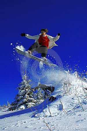 Free Snowboarder Jumping Over The Tree Royalty Free Stock Images - 7298929