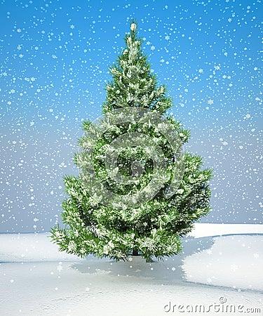 Snowbound Christmas firtree