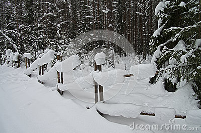 Snowbound Hurdle in Winter Forest.