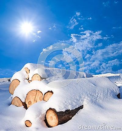 Snowbound logs