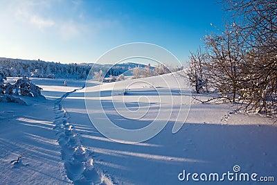 Snowbound plain
