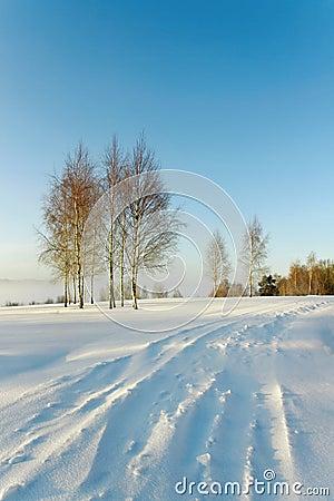 Snowbound road.