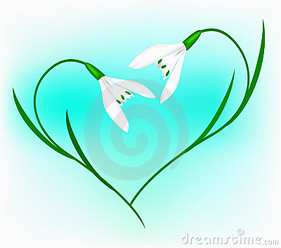 Snowdrop in the form of heart