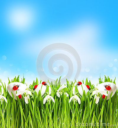 Free Snowdrops And Easter Eggs With Blurred Background Royalty Free Stock Image - 38810916