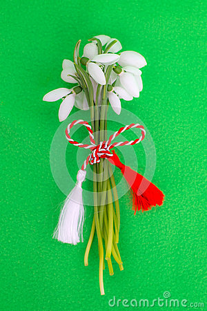 Free Snowdrops Bouquet With Spring Cord Royalty Free Stock Image - 50193046