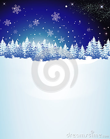 Snowed Christmas Trees Background